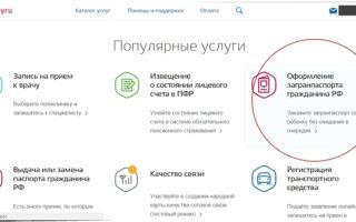 Что такое биометрический паспорт в России с 2020 года: суть и как выглядит