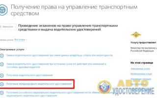 Фото на водительские права: требования в 2020 году к международному удостоверению и российскому