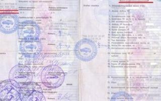 ПТС дубликат: зачем нужен паспорт транспортного средства, как получить при утере в 2020 году и когда его выдают