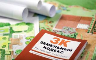 Приватизация земельного участка в 2020 году: пошаговая инструкция и сколько стоит