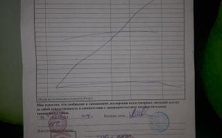 Как пригнать машину из Калининграда в Россию в 2020 году: паромом и самостоятельно