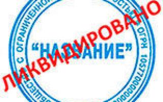 Ликвидация ООО в 2020 году: пошаговая инструкция самостоятельной процедуры и документы