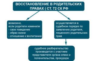 Ограничение родительских прав: основания, порядок, последствия и отмена в 2020 году