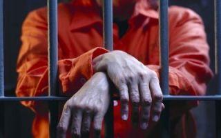 Ограничение свободы как вид уголовного наказания по ст. 53 УК РФ: отличия от лишения свободы