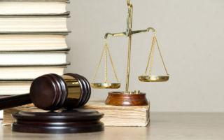 Как лишить отца родительских прав без его согласия в 2020 году: процедура и документы