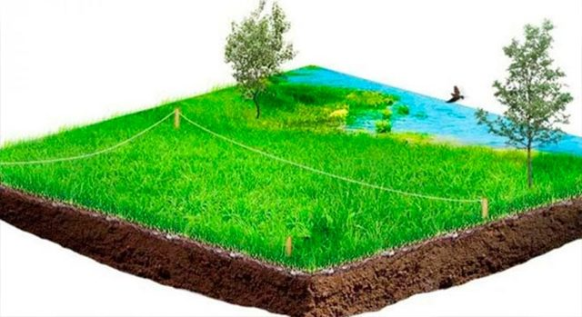 Кадастровый план земельного участка в 2020 году: оформление, внесение изменений, образец