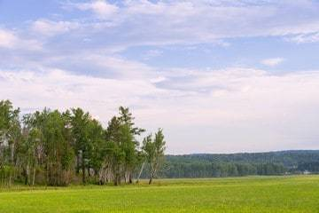 Рыночная стоимость земельного участка: что это такое, оценка, как рассчитать
