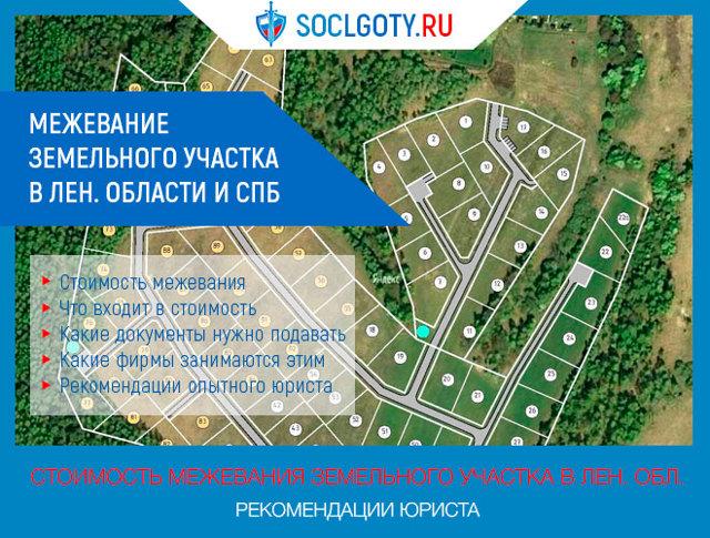 Межевание земельного участка в Ленинградской области: стоимость в 2020 году