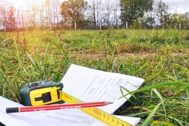 Приватизация земельного участка в 2020 году: пошаговая инструкция, сколько стоит