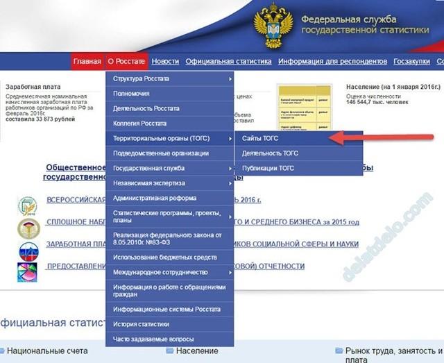 Как узнать ОКПО по ИНН на сайте налоговой, статистики Росстата?