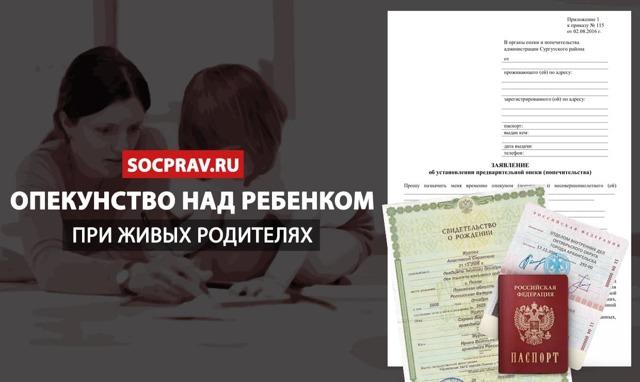 Как оформить опекунство над ребенком при живых родителях в 2020 году: требования, документы